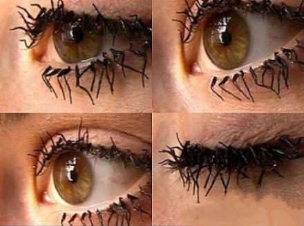 Spider False Eyelashes 78 best The Eyes Have ...