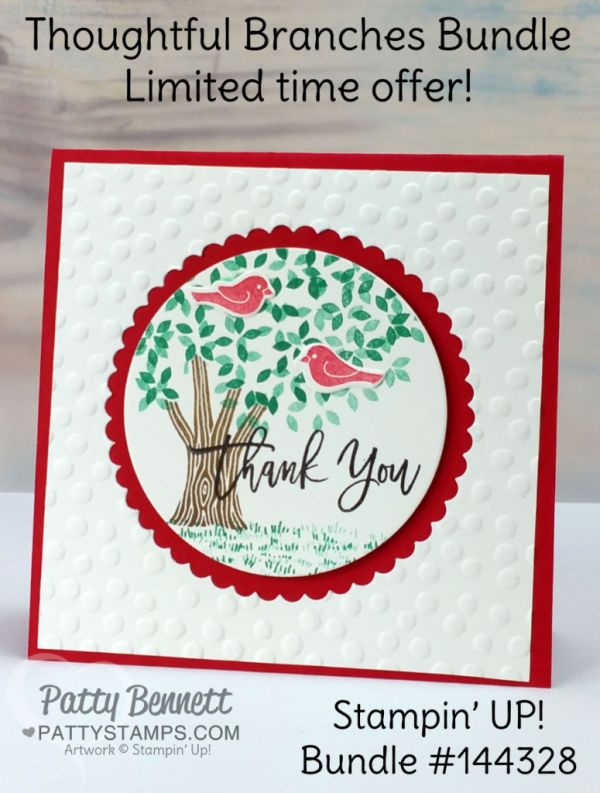 This LIMITED TIME OFFER special Thoughtful Brances bundle will only be available for the month of August, or WHILE SUPPLIES LAST, so my suggestion is to grab it now!  The Thoughtful Branches stamp