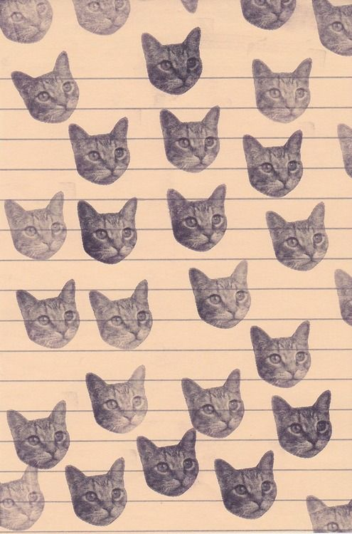 all notes shall be written on kitty lined paper