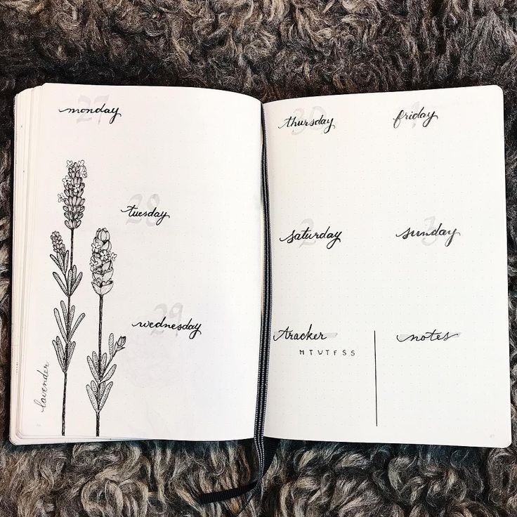 joyfulbujo Tag 25 // Lavender und meine minimale wöchentliche Verbreitung. Ich liebe es, wie schnell
