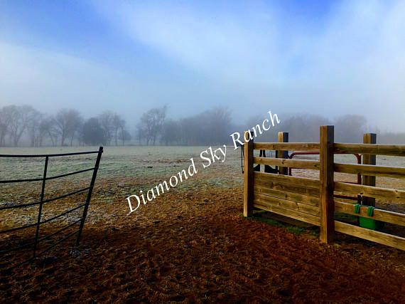 8x10  Matted Photo -  Corral in the Fog   Coming soon to the shop as a Set of 10 blank note cards... perfect for those quick notes for any occasion.      #rural #countryliving #farmlife #countrylife #photography #greetingcards #horses #goats #easttexas #Texas