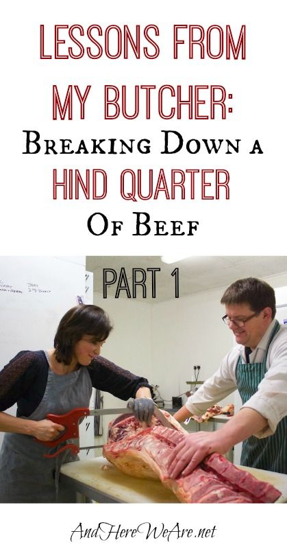 Today, I'd like to take you through a tutorial on breaking down a hind quarter of beef! We'll do this in two or three parts. Over a year ago, I had the chance to have an afternoon of butchery lessons from my local butcher-friend, David. He showed me how to break down a pig, and …