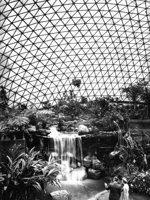 BUCKMINSTER FULLER THE CLIMATRON IN ST LOUIS, 1960 …gigantic geodesic dome housing the city's botanical gardens