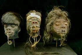 Real shrunken heads. Real human heads. For sale on ebay. Wat has the world come to...