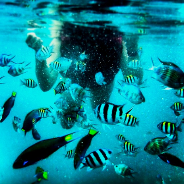 """Beauuutiful Underwater :) """"Belitung Island - Indonesia"""""""