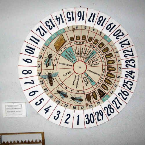 A queen-rearing calendar.  The tan-colored inner circle turns, so the development of queens can be predicted.