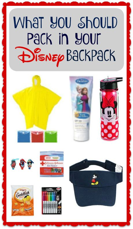 Image result for 10 Essentials Things to Bring Into Walt Disney World's Parks