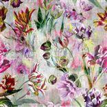 Tulipa Stellata Wallpapers   Designers Guild