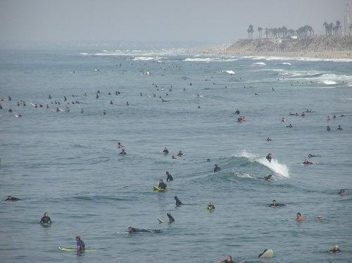Em terra de Surfistas quem tem Bomber é Rei.