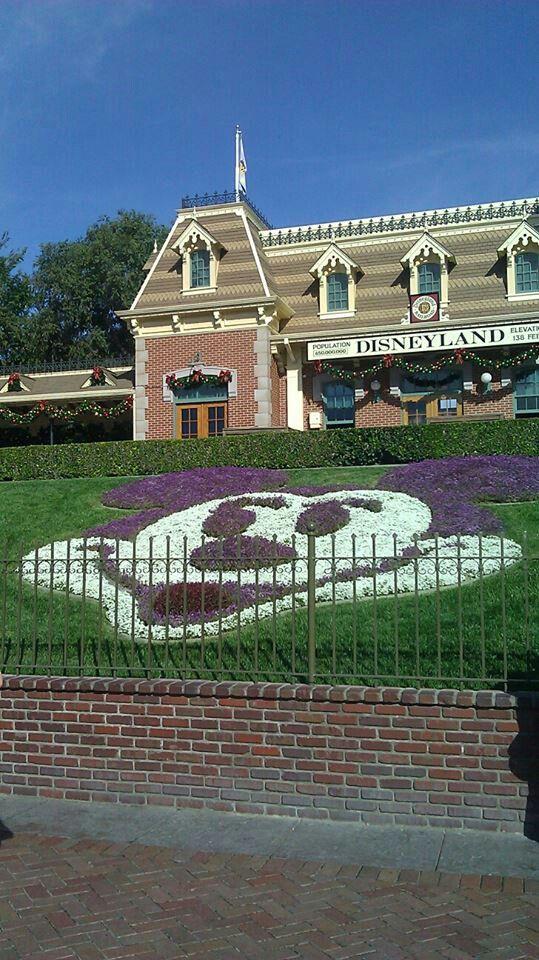 1st annual Epilepsy Awareness Day at Disneyland