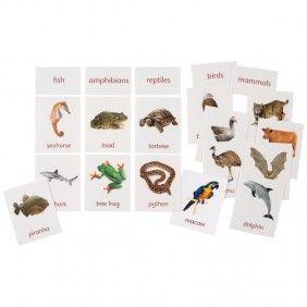 $14.95 BUY - Classification of Vertebrates - 25 animals, 5 header cards; Montessori Services/In-Print