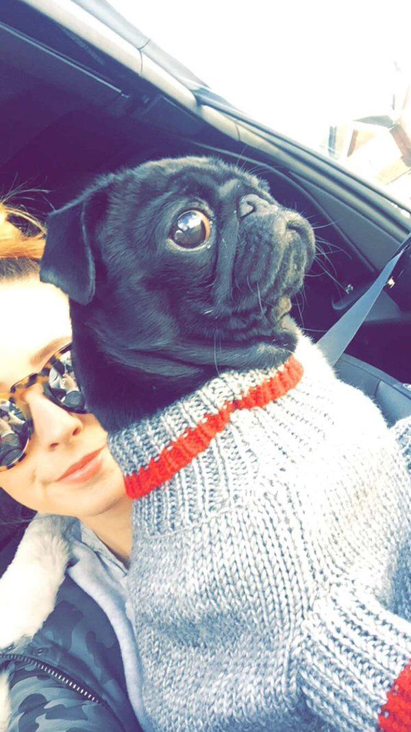 Photos and videos by Zoë (@Zoella)   Twitter