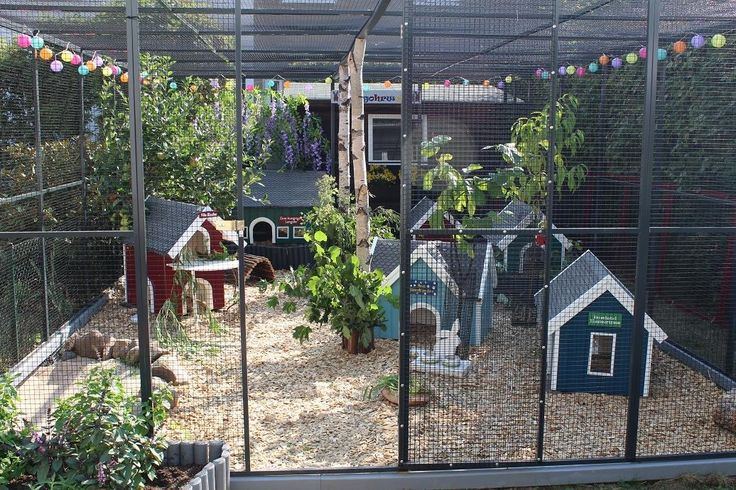 outdoor rabbit enclosure/rabbitat for 9 neutered bunz living colony style in Braunschweig/Germany. Cost:2500Euro according to Langohrwelt/FB pg