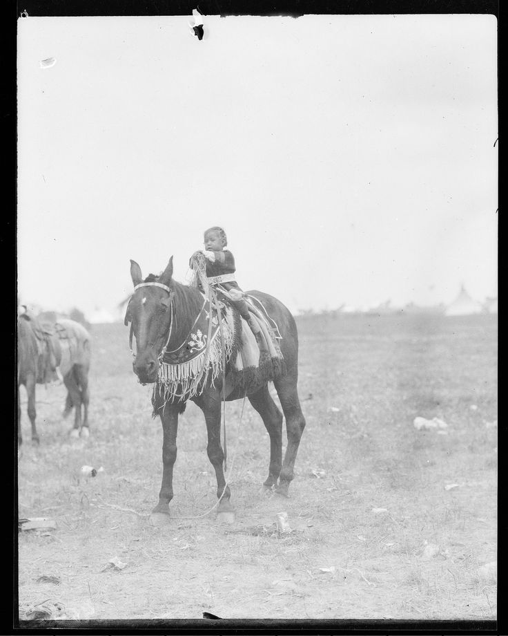 Маленький мальчик (Small Otter) на лошади. Сиксика.