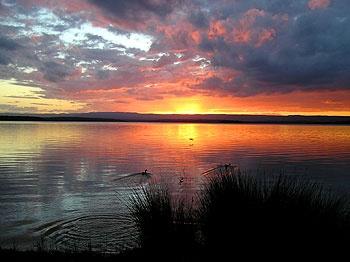 Sanctuary Point holiday accommodation, South Coast holiday accommodation offered by www.ozehols.com.au