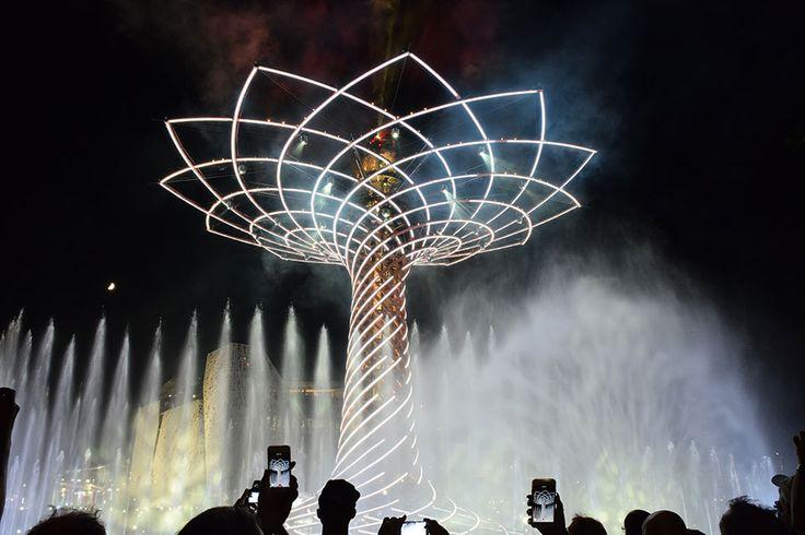 The Tree of Life. The colours of Expo Milan 2015 #raiexpo #expo2015 #worldsfair #milan #italy #treeoflife #alberodellavita #colours #life #white