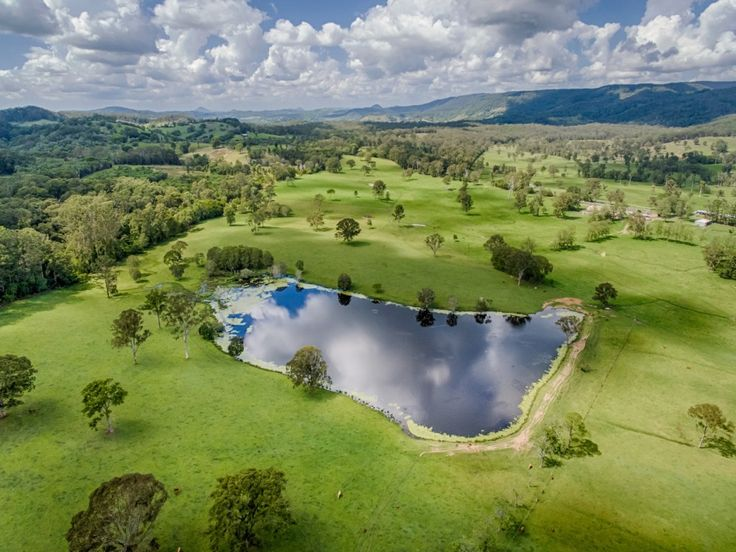 Outstanding Coastal Grazing Property - Reliable Rainfall  #Queensland #NeusaVale #ForSale #FarmProperty #RealEstate