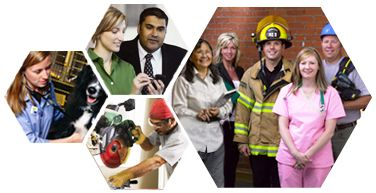 OCCinfo - Alberta Occupational Profiles - Home Page