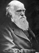 Darwin was a British scientist who laid the foundations of the theory of evolution and transformed the way we think about the natural world.    Charles Robert Darwin was born on 12 February 1809 in Shrewsbury, Shropshire into a wealthy and well-connected family. His maternal grandfather was china manufacturer Josiah Wedgwood, while his paternal grandfather was Erasmus Darwin, one of the leading intellectuals of 18th century England.