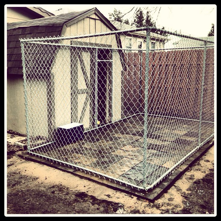 c361dc0abaa4a94ceb6e709dacb56e73--outdoor-dog-kennel-dog-kennels