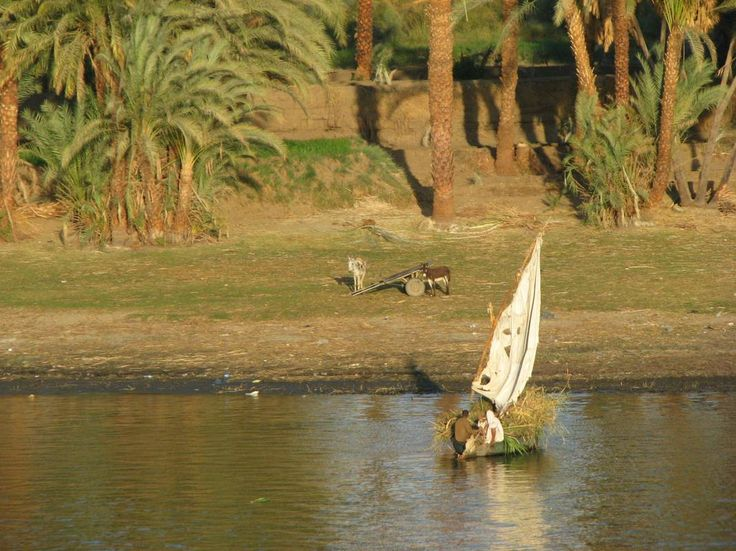 Along the Nile, Egypt  - http://earth66.com/rural/nile-egypt/