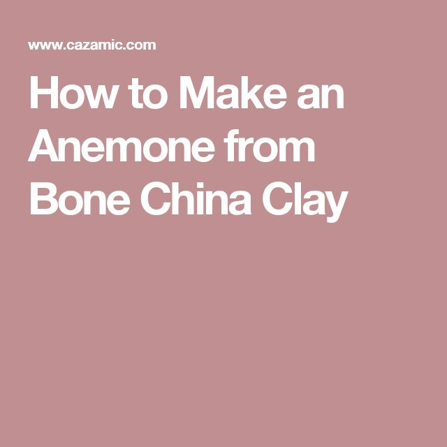 How to Make an Anemone from Bone China Clay