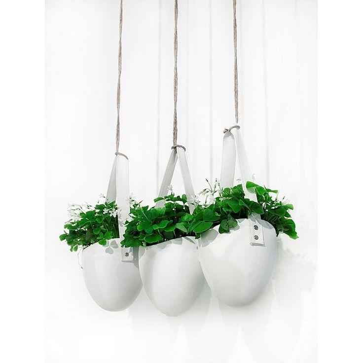 25 beste idee n over hangende bloempotten op pinterest potplanten containerbloemen en potplanten - Decoratie kooi ...