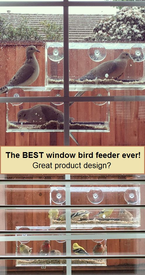 The BEST window bird feeder every Great product design - See more at: http://garden-favorite.blogspot.com/2017/03/the-best-window-bird-feeder-every-great.html#sthash.a4nu8m4M.dpuf