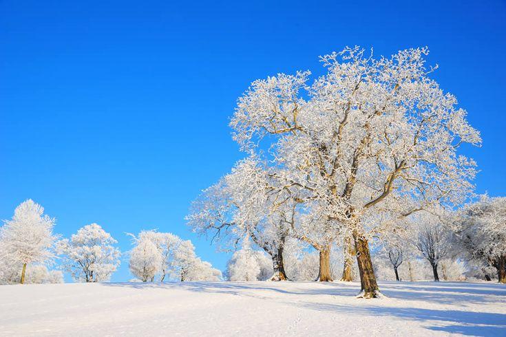 paisajes invierno - Buscar con Google