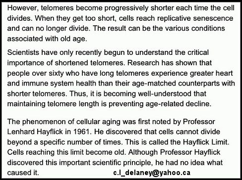What is a telomere Part 2. c.l_delaney@yahoo.ca or coltsman.brian@yahoo.ca