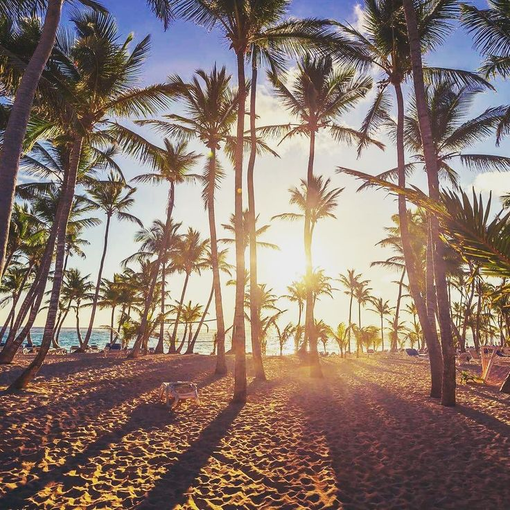#instatravel #lovetravel #travelplanet #travellife #travel #traveler #traveluje #travelpic #awesome #beautiful #summer #sunset #podróż #podróże #wakacje #palmy