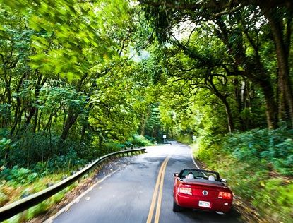 Car Rental Maui Aaa Discount
