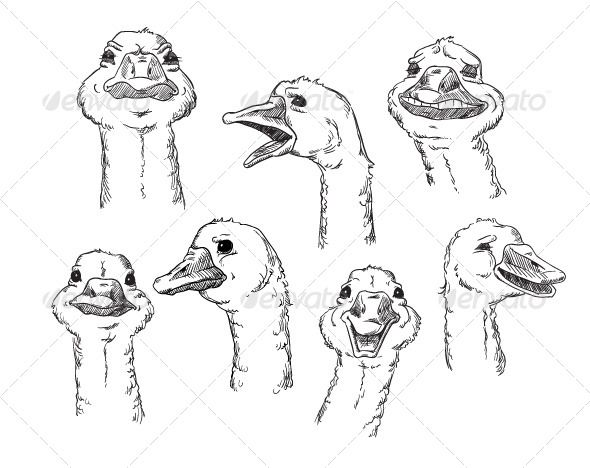 goose with Different Facial Expressions of Human  #GraphicRiver         A cute goose with different facial expressions of a human. Vector illustration.                     Created: 10 December 13                    Graphics Files Included:   JPG Image #Vector EPS                   Layered:   Yes                   Minimum Adobe CS Version:   CS             Tags      angry #bird #cute #drawing #emotion #emotional #facial expression #feeling #funny #goose #head #humane #illustration #laughing…