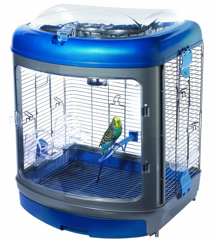 cool parakeet cages