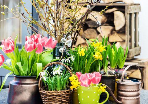 Aj vy už celou svojou bytosťou cítite jar? A máte chuť vyčariť si tú najkrajšiu a najžiarivejšiu jarnú náladu? Ponúkame malú inšpiráciu. Jarná nálada