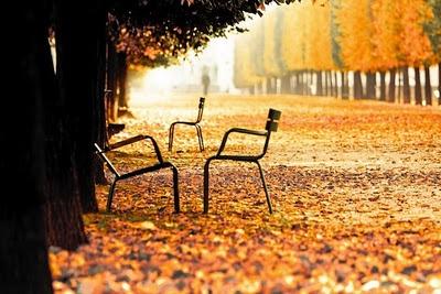 Paris in the Fall: Paris, Autumn, Tuileries, Fall, Travel, Place, Photo