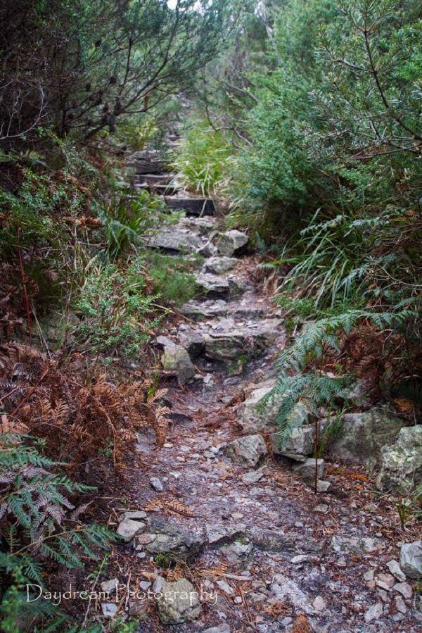 Rocky Cape National Park #Tasmania Photo by Benita Bell, article for think-tasmania.com