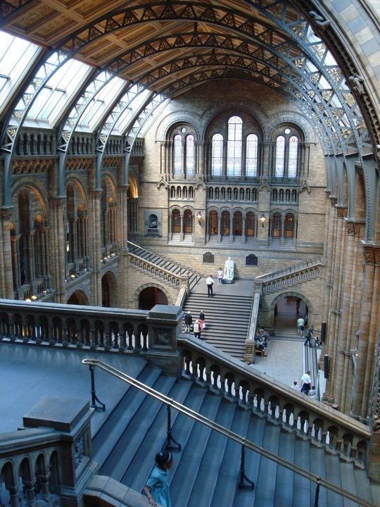 Natural History Museum_Londres