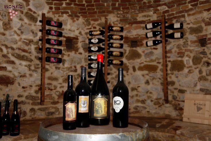 Bosco Nestore http://www.wineandtravelitaly.com/en/vineyard/364-bosco-nestore-c-snc.html?recherche=1 #italy #wine #travel #winery #abruzzo