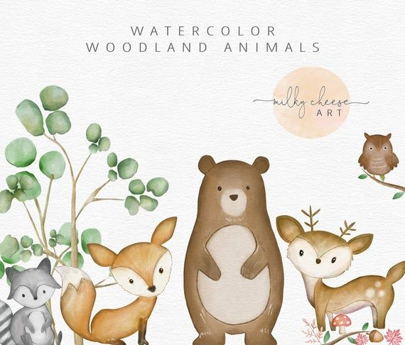 Aquarelle Clipart Woodland Animals Clipart Forest Animal Etsy In 2021 Animal Clipart Watercolor Nursery Animals Watercolor Animals