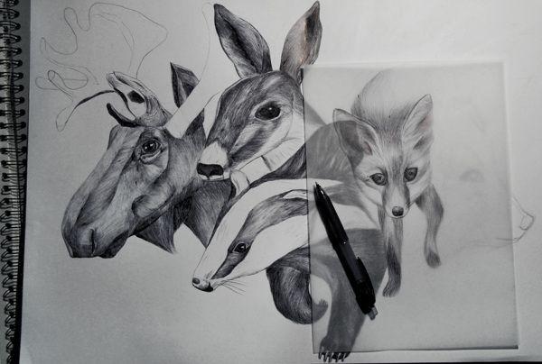 badger fox, elk, deer, illustration, realistic, forest, animals, #ElementEdenArtSearch