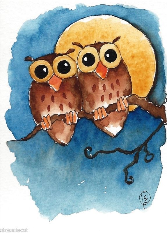 Owls on a full moon night