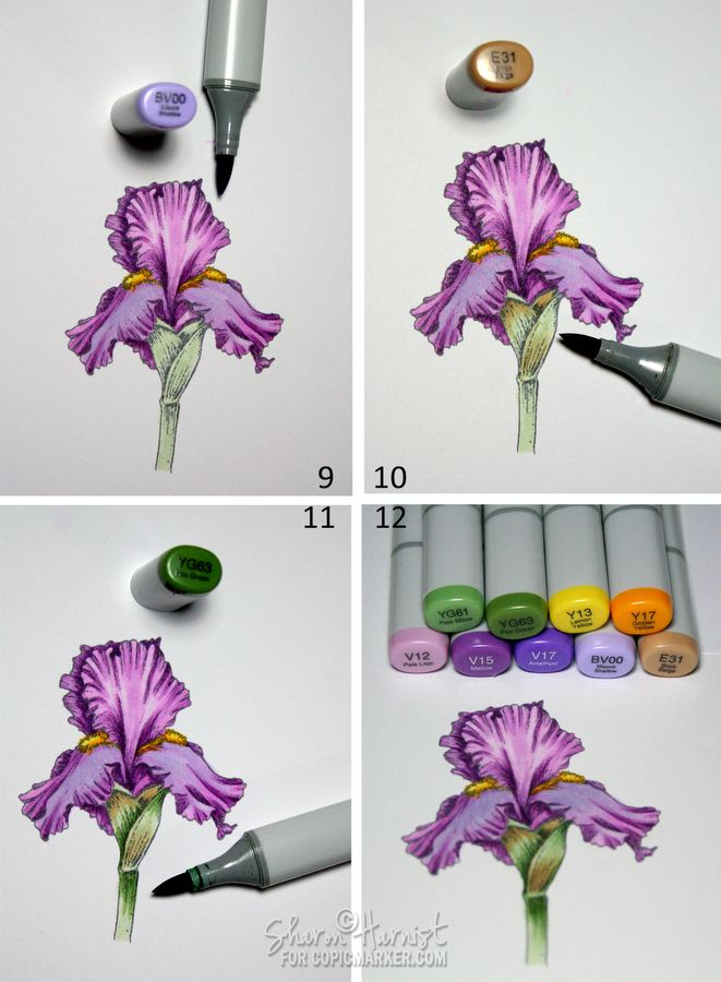 a Purple Iris to add some depth of color and a little shadowing to the lower foreground flower petals with a little BV00 on them. flick/feathered E31 to resemble the tissue paper-like parts that sometimes form around the this bulb part of the stem.YG63 to add shading to the stem.
