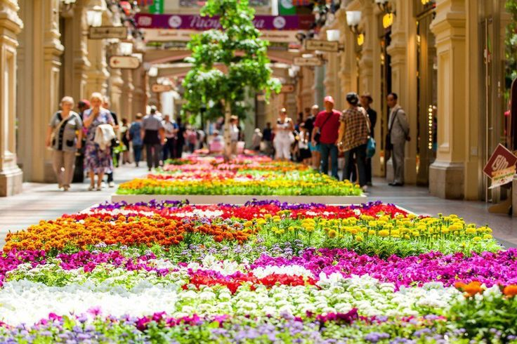 Фестиваль цветов в ГУМе С 17 до 28 июля 2017г. В этом году на фестивале представят около 600 тысяч цветов. Такие сорта, как розовая герань, белая петуния, красная сальвия, растопят сердца даже самых равнодушных к природе городских жителей. Для того, чтобы цветы сохраняли свежесть в течение длительного времени, разработана специальная система орошения. Фестиваль будет проходить уже в пятый раз, и, судя по опыту предыдущих лет, зрелище обещает быть ничуть не менее интересным, чем посещение…