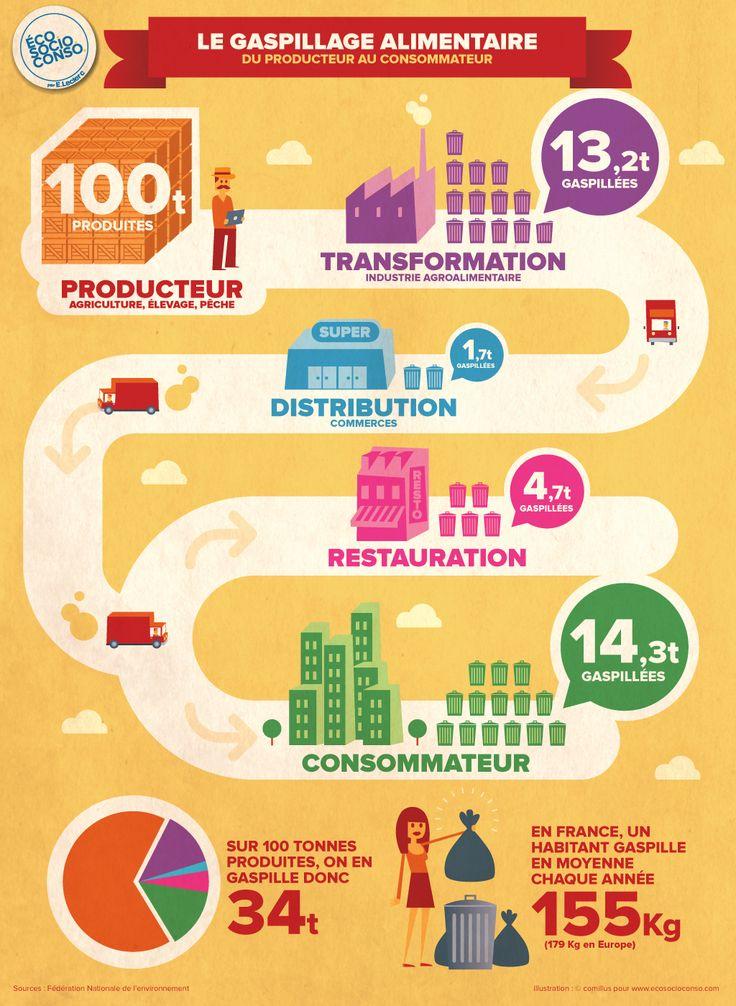 Le gaspillage alimentaire du producteur au consommateur