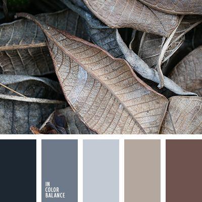 бежевый, контрастное сочетание теплых и холодных тонов, коричневый и черный, кремовый бежевый, оттенки коричневого, оттенки серо-синего цвета, оттенки серого, оттенки сине-серого цвета, палитры для дизайнеров, рыже-коричневый цвет, серый,