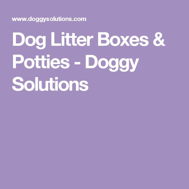 Dog Litter Boxes Amp Potties Doggy Solutions Dog Litter