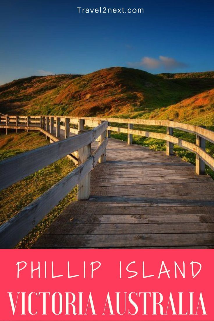 best photo essay ideas documentary photography  photo essay phillip island