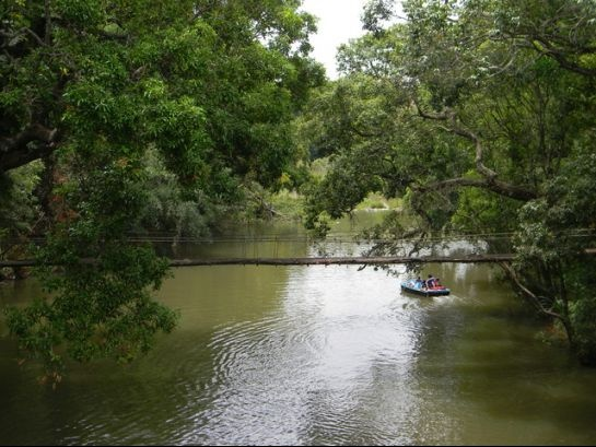 #India, Nisargadhama,#Coorg    http://www.nativeplanet.com/coorg/photos/4160/