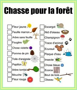 "4 printable ""treasure hunt"" (chasse au trésor) worksheets in Frnech on the following topics: forest, city, playground, and beach."